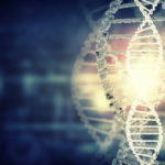 Catalyseur de transformation® | Notre actualité - L'ADN de Digital Morpho®